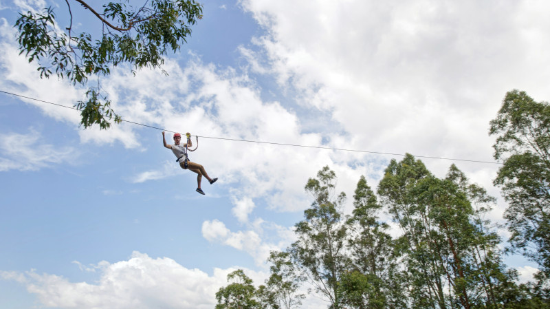 RedBalloon High Ropes Climbing Course with Flying Foxes - Newcastle