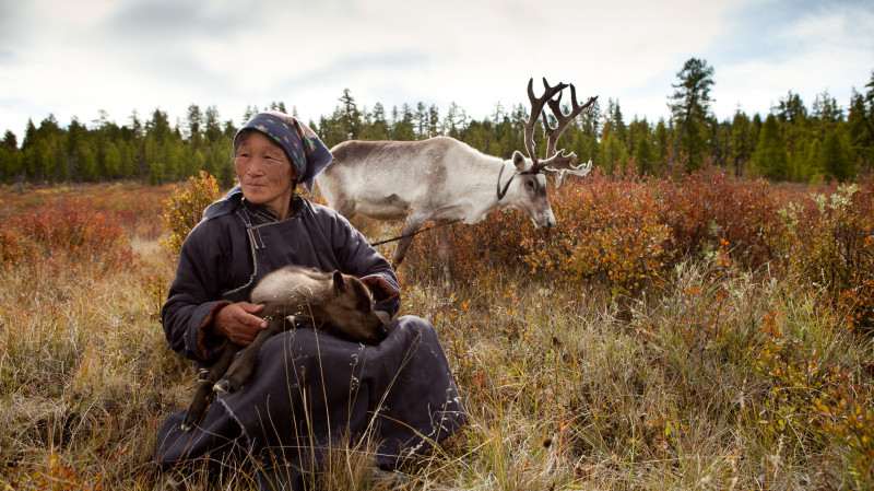 RedBalloon Travel with the Reindeer Tribes of Mongolia - 9 Nights