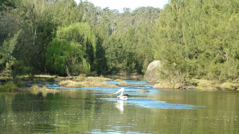 RedBalloon Cruise the Nepean River Gorge - For 2