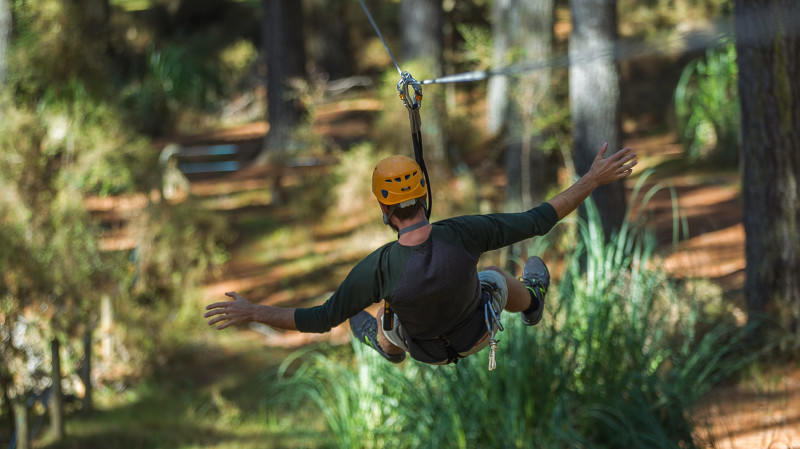 RedBalloon High Ropes Adventure - Tarzan's Test