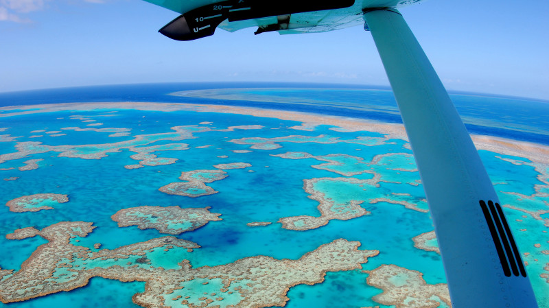 RedBalloon Scenic Reef Flight with Glass Bottom Boat and Snorkelling