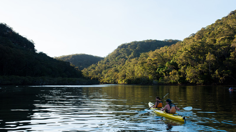 RedBalloon Guided Kayak Tour with Bushwalking - Half Day