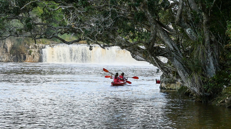 RedBalloon Haruru Falls Guided Kayak Tour - Half Day