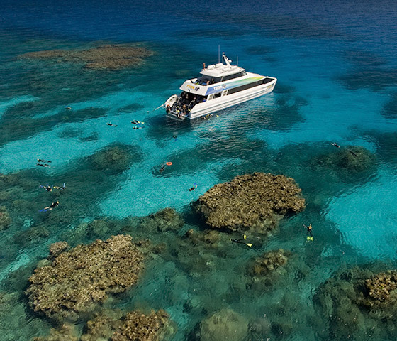 Things to do on the Great Barrier Reef