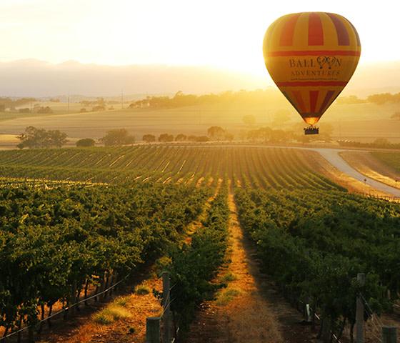 Hot air ballooning Barossa Valley