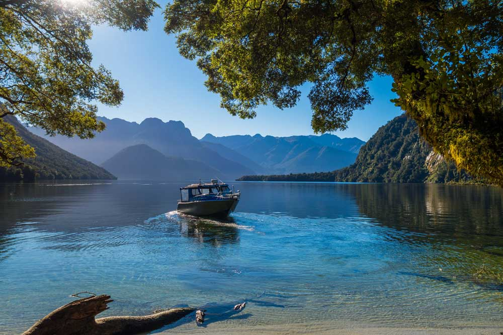 Guided walks of New Zealand