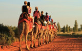 Sunset camel ride in Alice Springs, Uluru