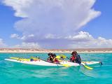 Ningaloo Reef Turtle, Kayak and Snorkel Tour - Half Day