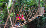 High ropes and zipline adventure Tamborine