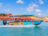 Broome Scenic and Prehistoric Boat Tour