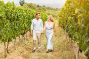 Man and woman holding hands walking through a vineyard