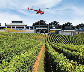 helicopter wine tours