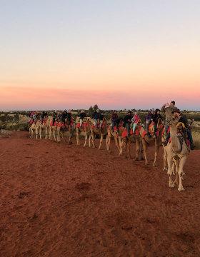 Camel ride in Uluru, NT
