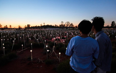 Field of Light tour, Northern Territory