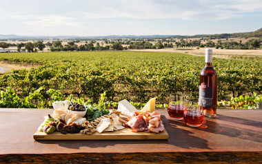 Mudgee wine tour with brunch and horse riding