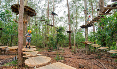Treetop adventure park at West Pennant Hills NSW