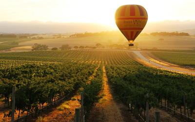 Hot air balloon flying over Barossa Valley
