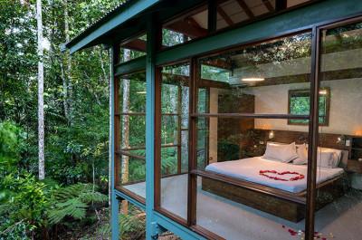 Daintree Rainforest Luxury accommodation
