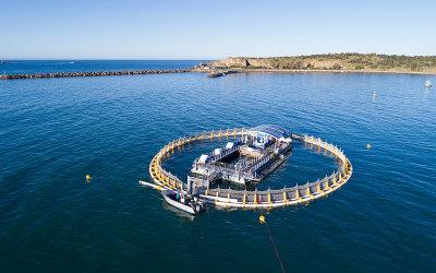 In-sea aquarium South Australia