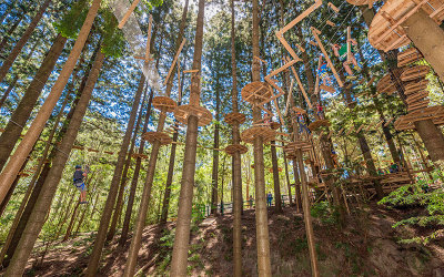 Treetop ropes course Pennant Hills