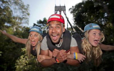 Jungle swing Queensland