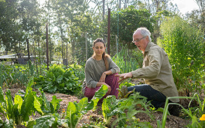 online organic garden coaching lesson