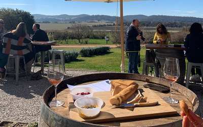 Winery tour in Mudgee, Lowe Family Wines