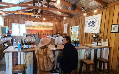 Winery tour in Mudgee