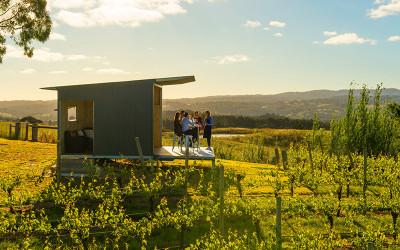 The Lane Vineyard private picnic and wine tasting