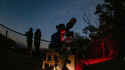 Blue Mountains Wine Tasting and Stargazing Tour