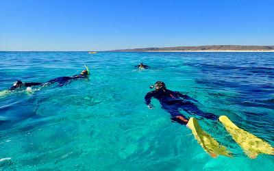 WA: Ningaloo lagoon kayak and snorkel tour
