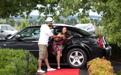 Chauffeur winery tour