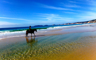Rainbow Beach horse riding tour