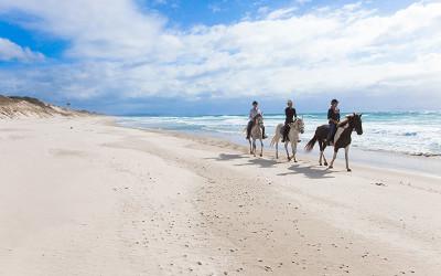 Horse riding along Pakiri Beach