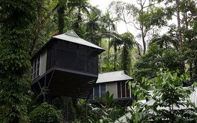 Daintree Rainforest Resort and Spa