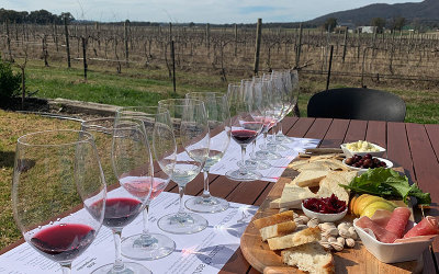 Winery tour and tasting and lunch in Mudgee