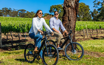 Mclaren Vale winery bike tour