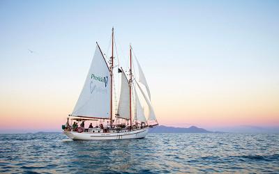 Whitsundays sunset sail