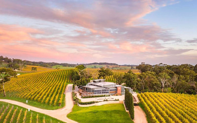 7 course lunch at The Lane Vineyard, Adelaide Hills