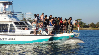 Dolphin Watching Canal Cruise - 1 Hour