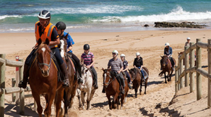horse riding tour st andrews beach mornington peninsula