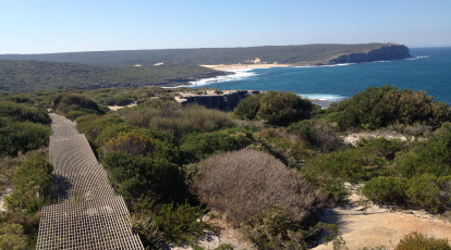 Royal National Park Bundeena walking track aerial view beach and bushland