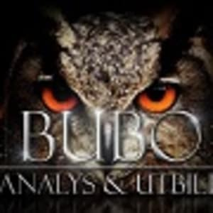 Bubo analys
