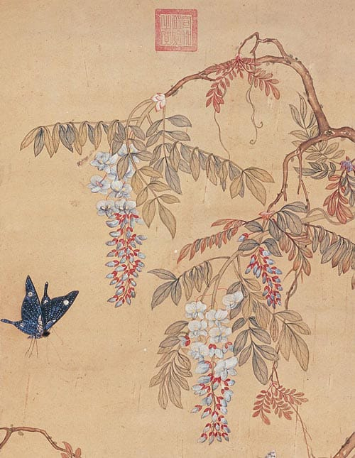 Butterfly and Chinese Wisteria Flowers by Xu Xi,Kacho-ga