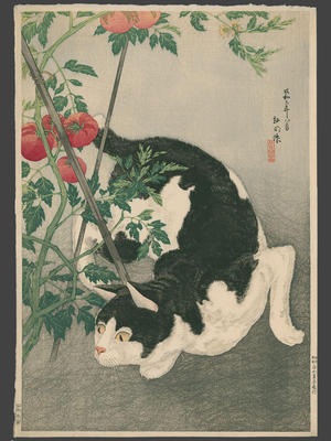 Black Cat And Tomato Plant (1931) by Shotei Takahashi - ukiyo-e - kacho-ga