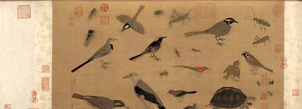 Birds, Insects and Turtles by Huang Quan, Kacho-ga