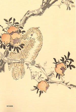 Parrot and pomegranates, Imao Keinen, c. 1891, kacho-e