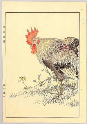 Rooster and Hen, Imao Keinen, c. 1892, kacho-e