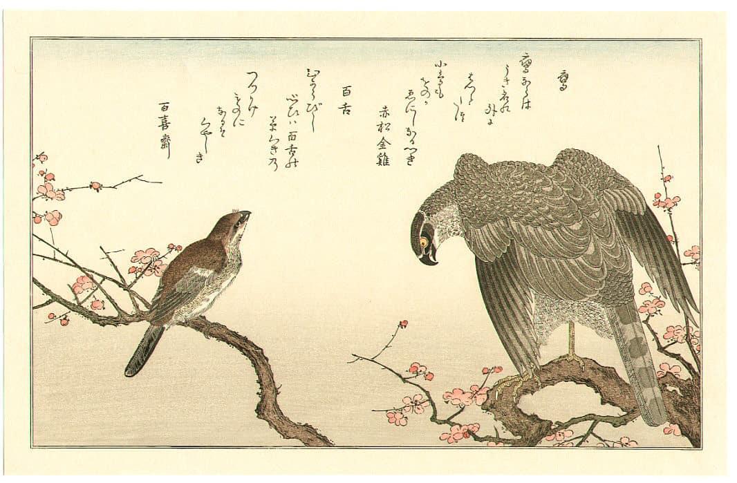 Hawk and Shrike, Kitagawa Utamaro, c. 1790,kacho-e
