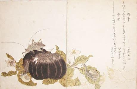 Land Snail and Giant Katydid, Kitagawa Utamaro, c.1788, kacho-e